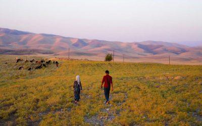 Sapori e racconti del Kurdistan